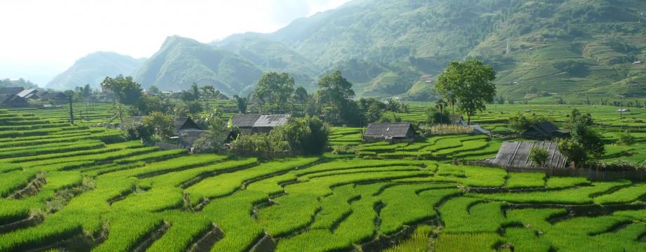 Mon voyage au Vietnam, c'est pour très bientôt : vietnamvo.com